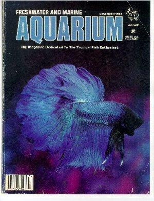 aquarium_nuovo